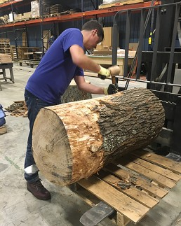 Stripping oak log by hand