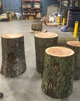 Oak Logs ready to be stripped
